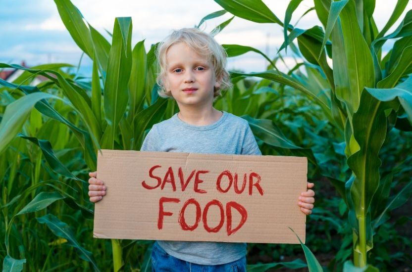Minimaliseer voedselverspilling door een efficiënte toeleveringsketen