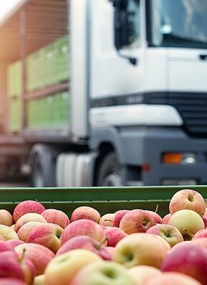 Houd uw groenten en fruit vers met de juiste logistieke verpakking